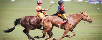 La course a chevaux